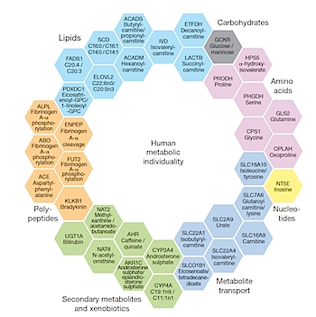 The 37 metabolites featured in Nature