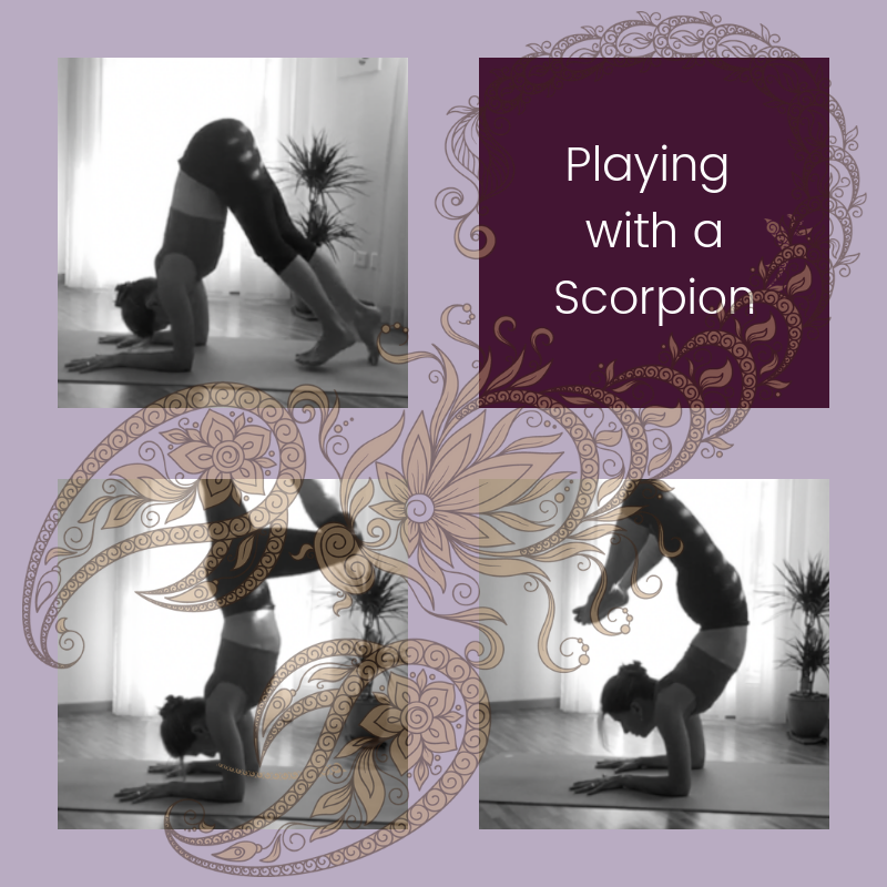 Playing with aScorpion (1).png