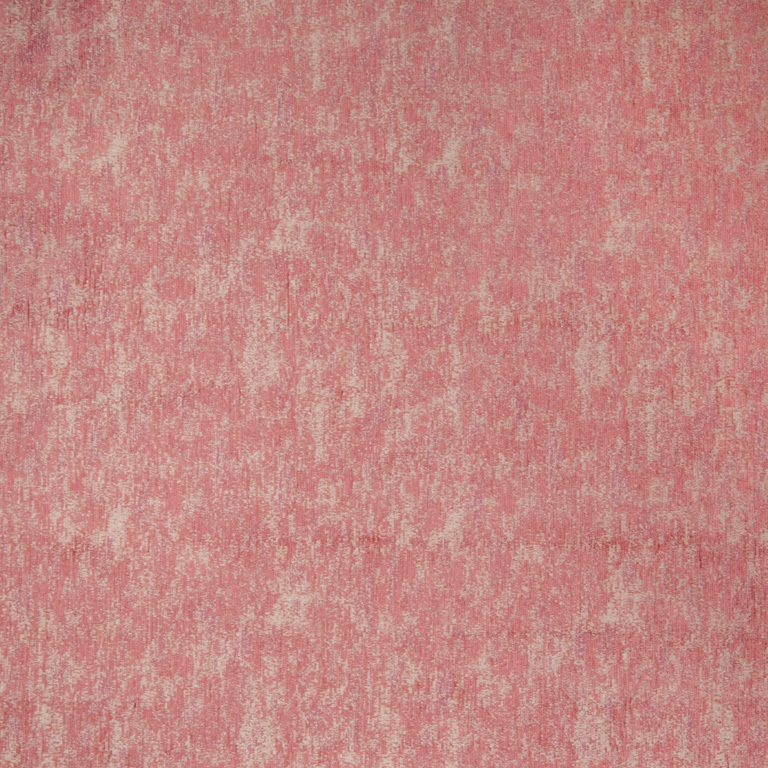 Pacific Hibiscus
