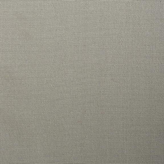Canvas Silver