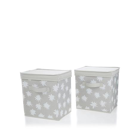 hable-construction-2-pack-storage-bins-with-lids-d-20170706164119147-546028_0C8.jpg