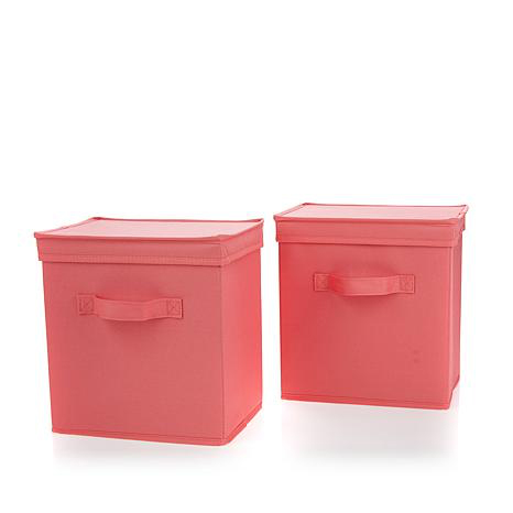 2 Pack Organization Bins With Lids In Coral