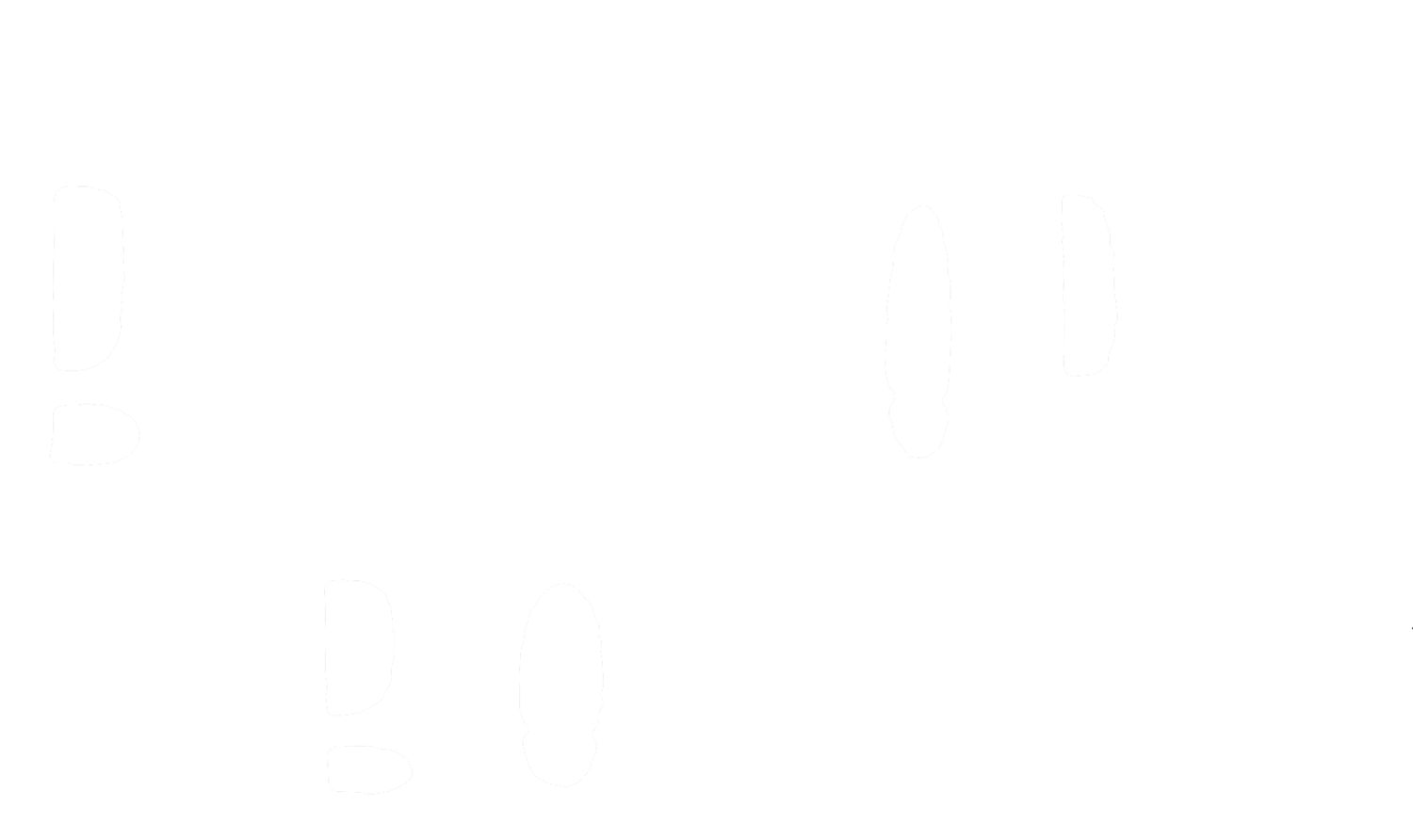 THE BULLHORN BOYS