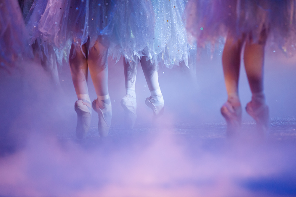 Photo by Quinn Wharton of SVB in Karen Gabay's The Nutcracker