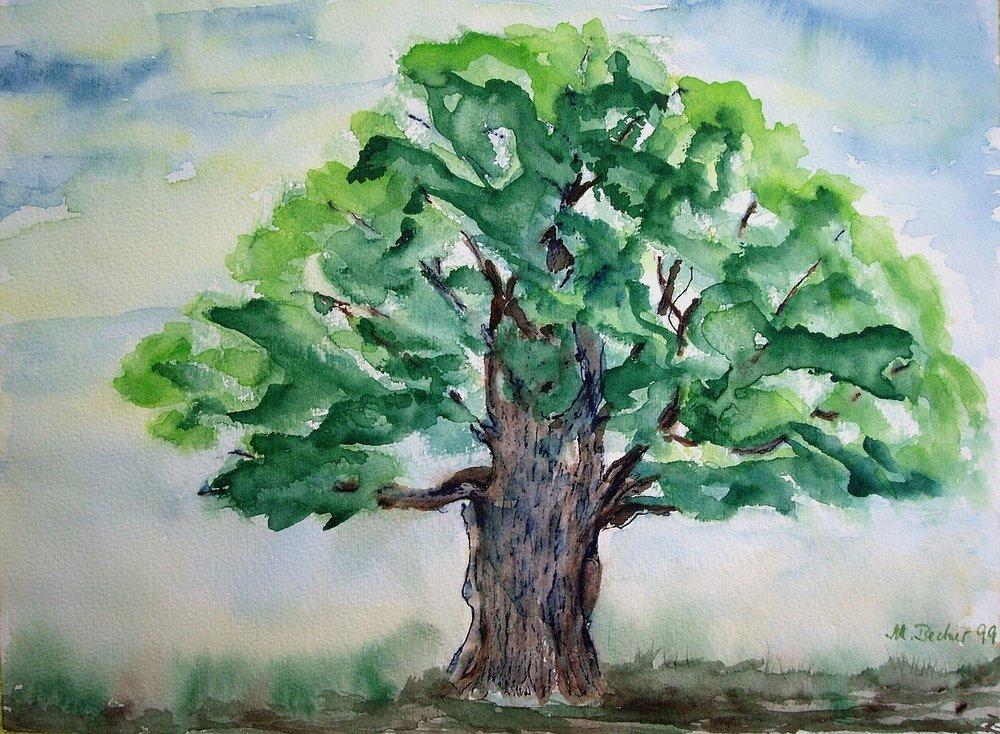 tree-21301_1280.jpg