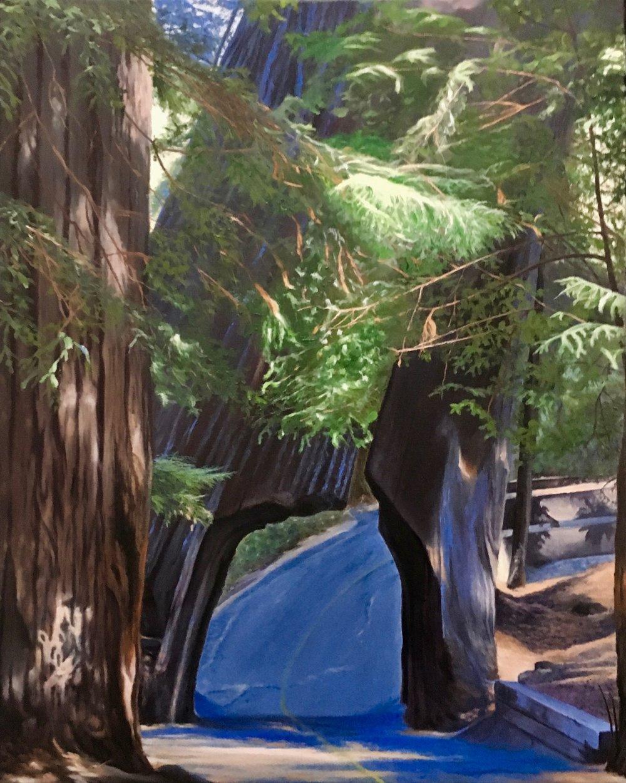 Redwood's Road