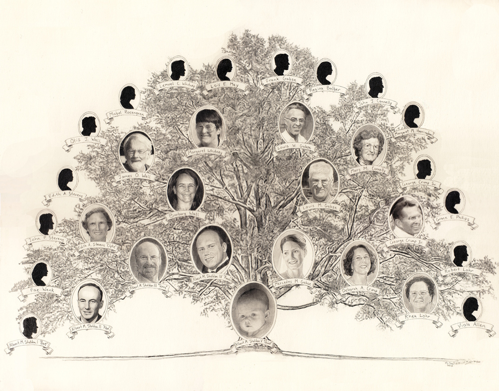 "Sheldon Family Tree, pencil, 14"" x 17"" - by Bly Pope"