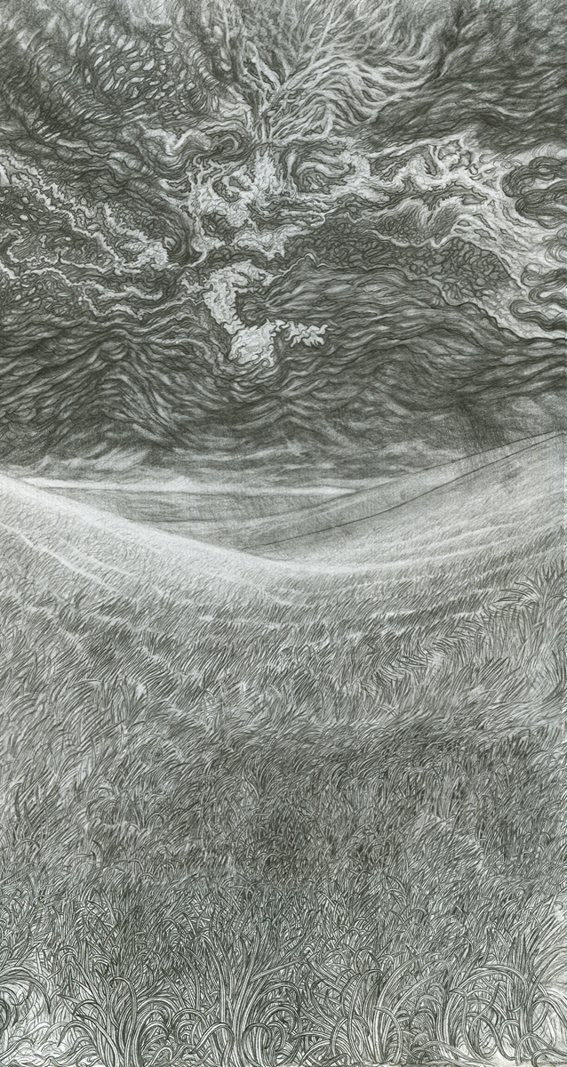 "Grassland Storm, pencil, 13"" x 7"" - by Rowan Pope"