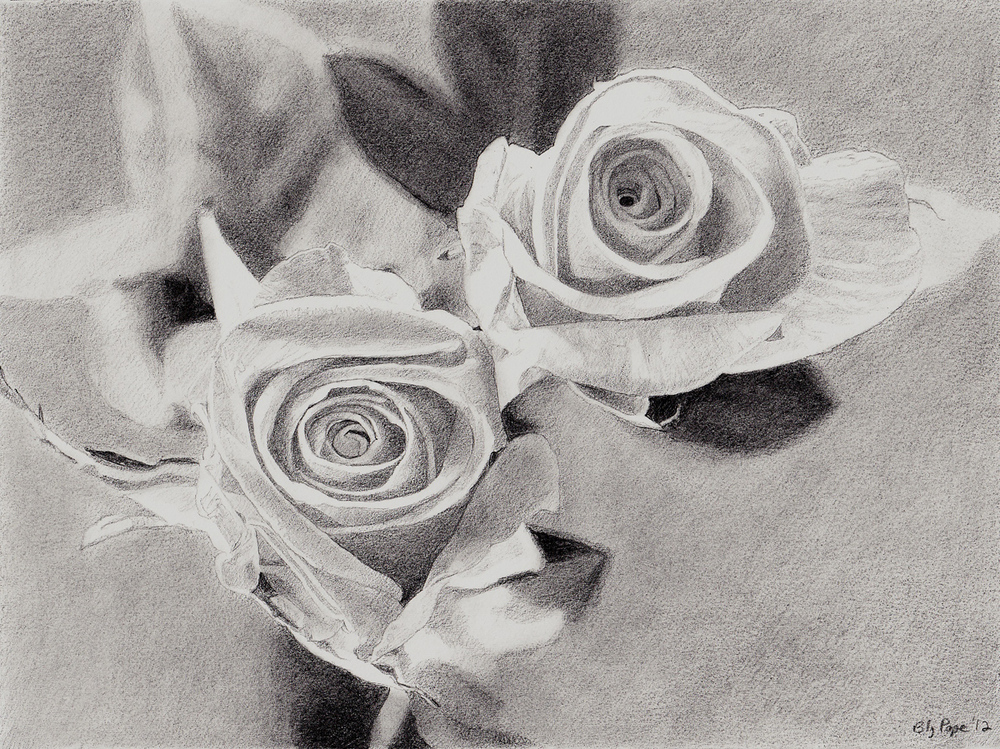 "Roses, pencil, 4"" x 6"" - by Bly Pope"