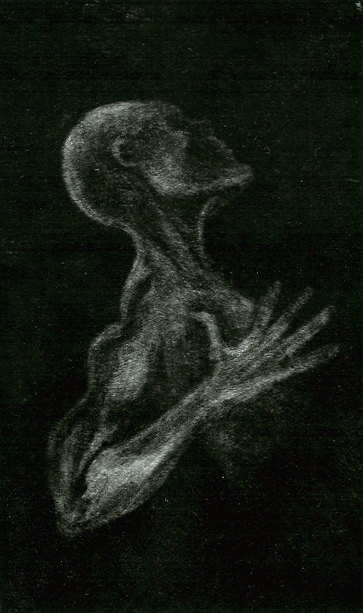 "Figure, mezzotint, 5"" x 3"" - by Bly Pope"