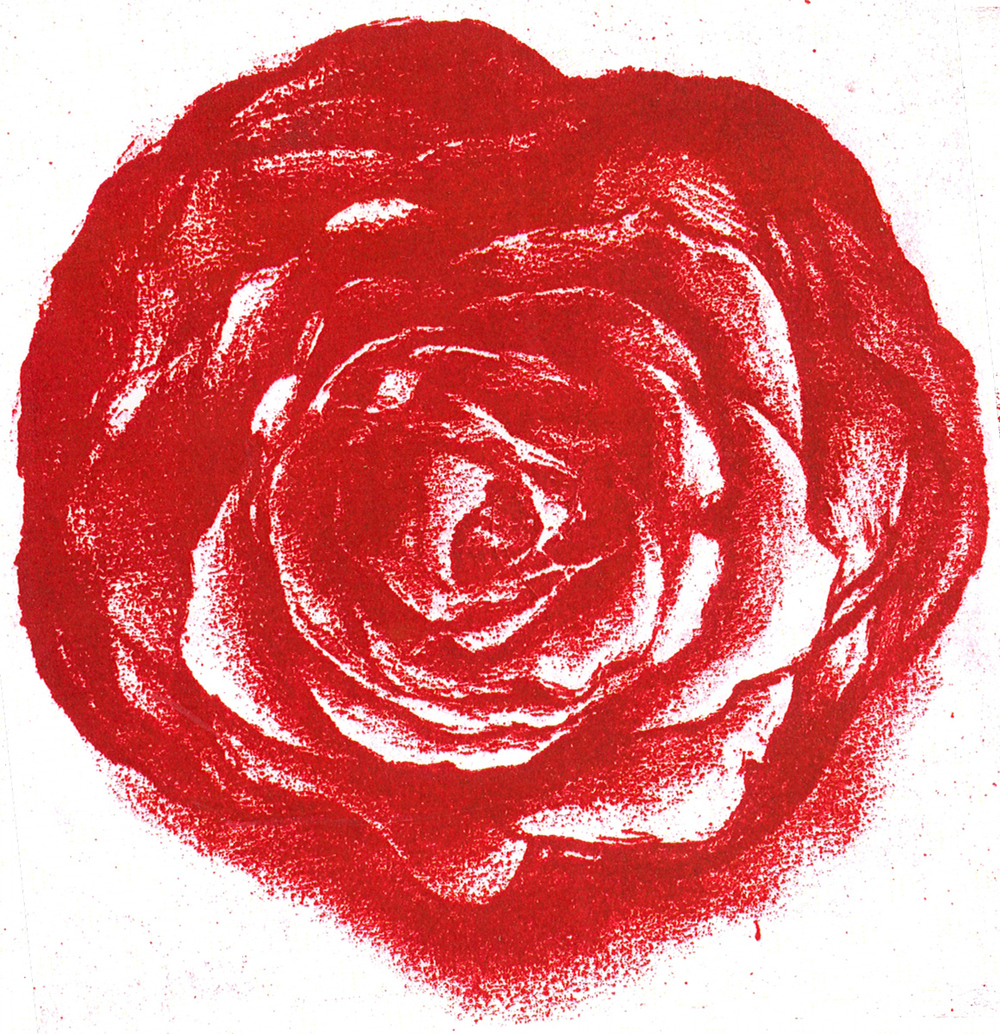 "Red Rose, print, 6"" x 6"" - by Bly Pope"
