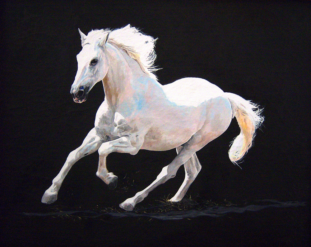 "Running Horse, oil, 36"" x 30"" - by Rowan Pope"