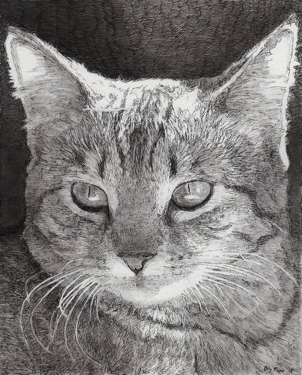 "Rue, pen, 8"" x 7"" - by Bly Pope"