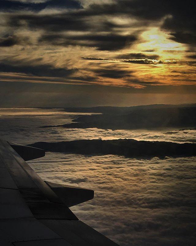 Back in the sky this week. ✈️🎥 . . . #exploretocreate #igerssf #sanfrancisco #lifeofadventure #livelovelife #moody #exploring #cloudporn #creatorclass #moodygrams #upintheair #ilovetravel #writetotravel #instatravelling ##instapassport #postcardsf #travelgram #visionarygram #alwayssf #travelstoke @nowrongwaysf #mycity #nowrongwaysf