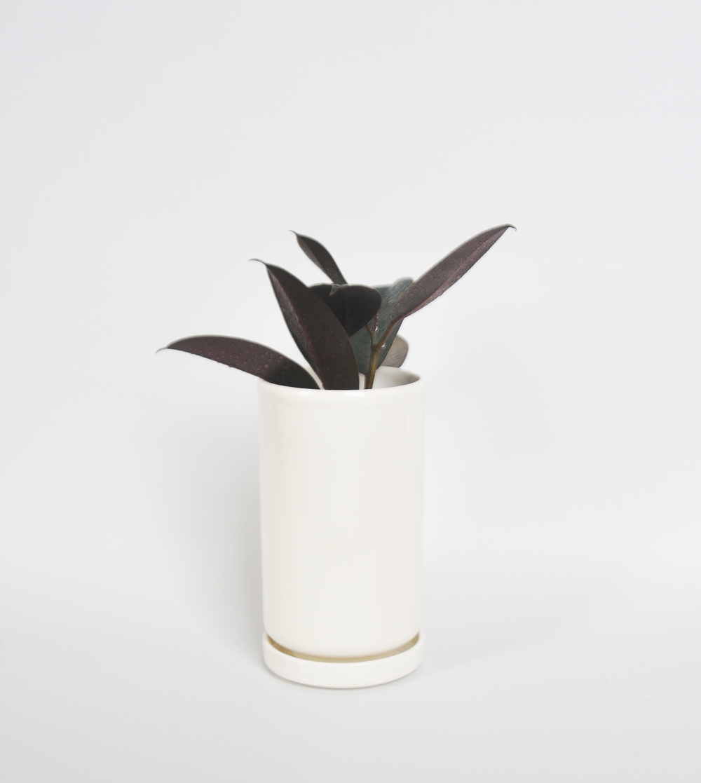 planter No.4 w plant.jpg