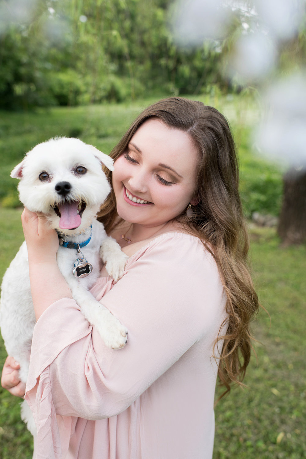 How to get better photos with your dog