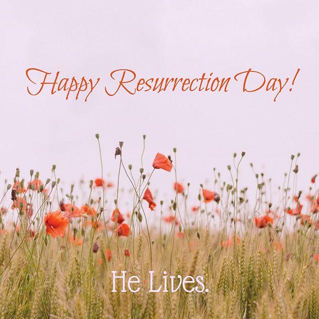 Happy Resurrection day! He lives. #ibelieve #newbeginnings #bloom  #everyday 🙌🏼🐛🦋🌺🌻🌸