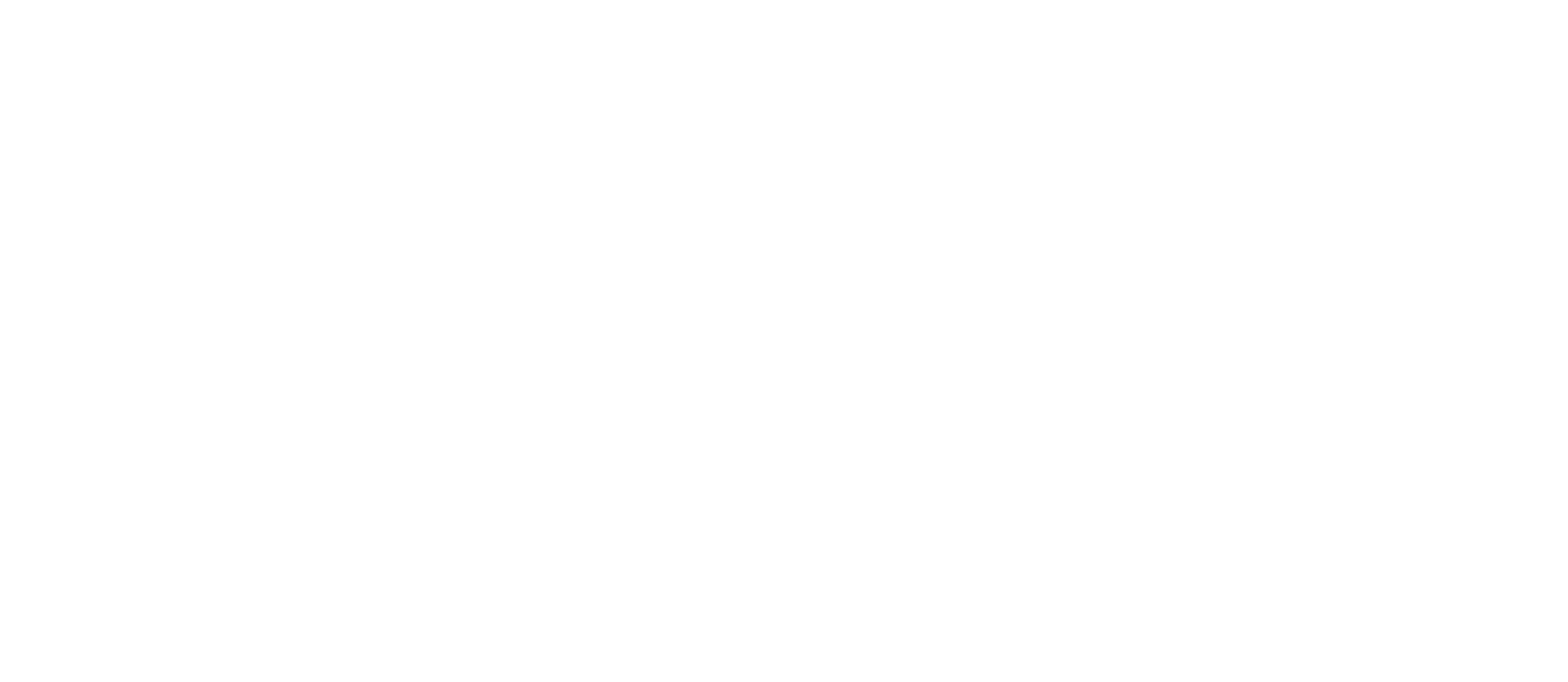 NC Youth Connected