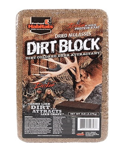 dried molasses dirt block.jpg