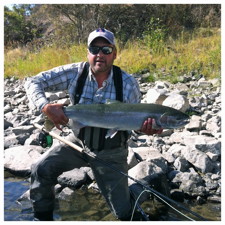 steelhead on the fly
