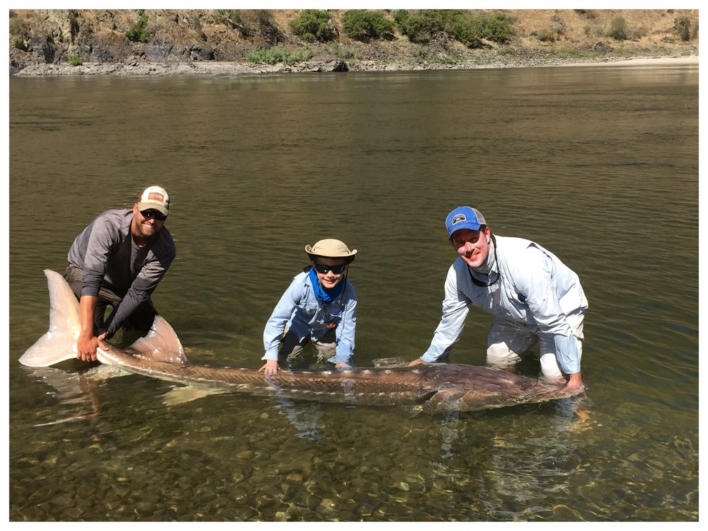 Editted Hells Canyon Sturgeon Picture.jpg