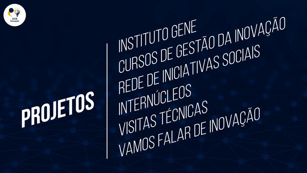 Apresentação ACIB Inovação internúcleos 2016.007.jpeg