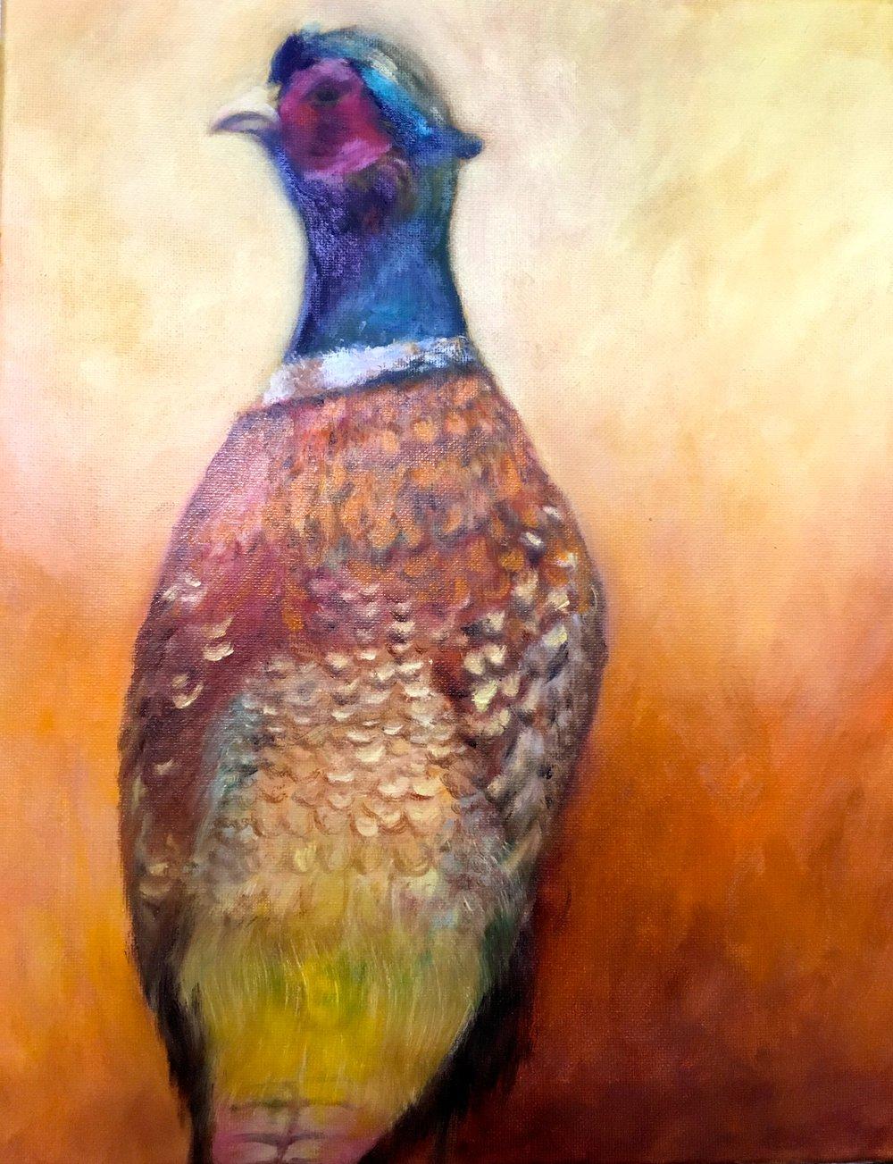 Autumn Pheasant