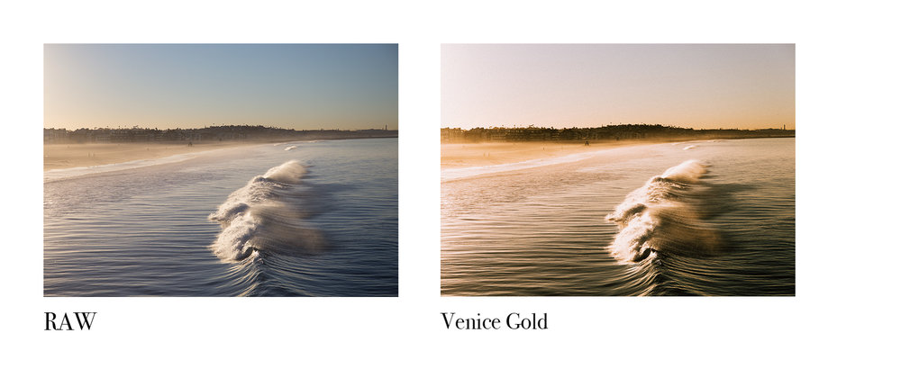 Venice Gold.jpg