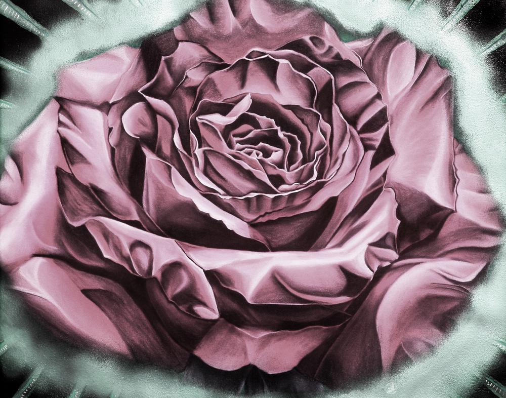 Fifites Rose