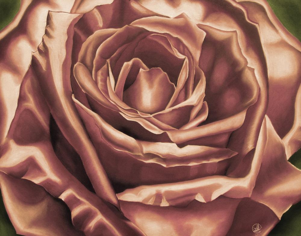 Tea Stain Rose