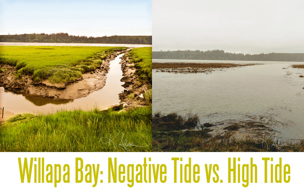 Low tide and High tide side by side blog web.jpg