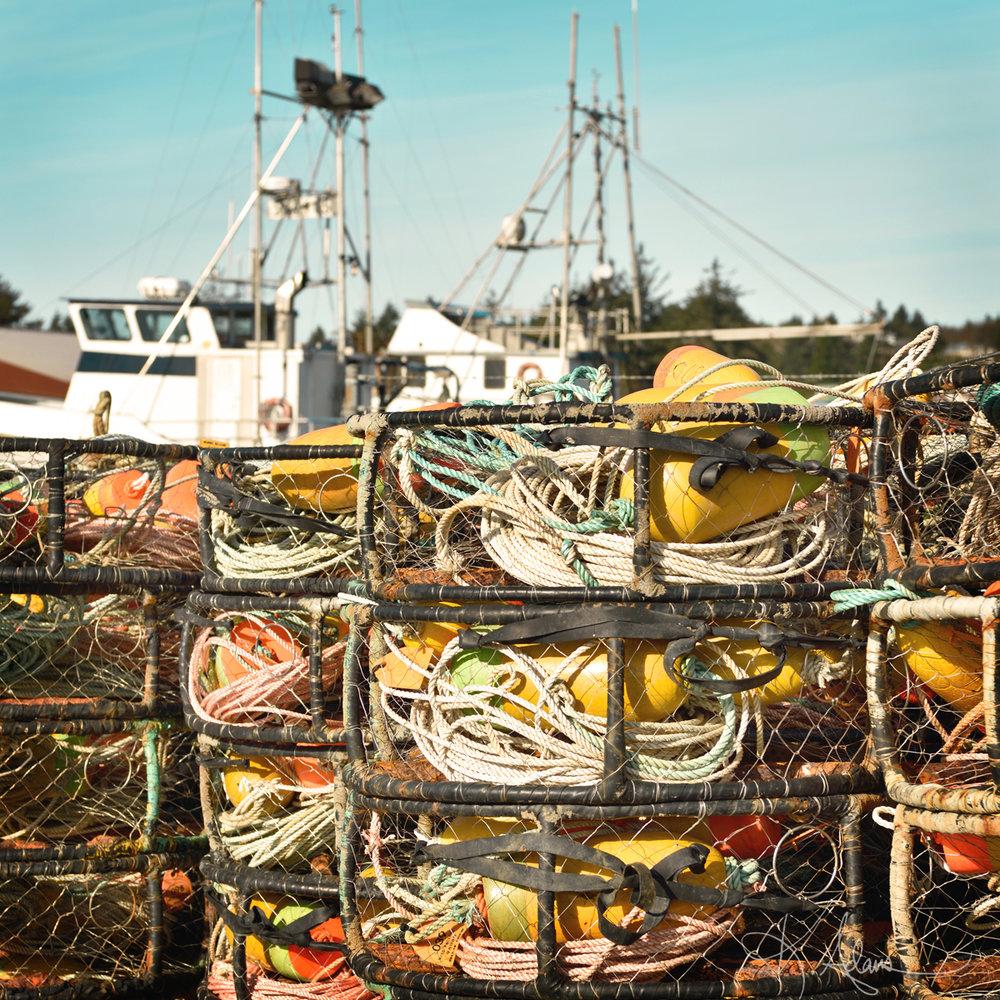 Crab Pot Kingdom