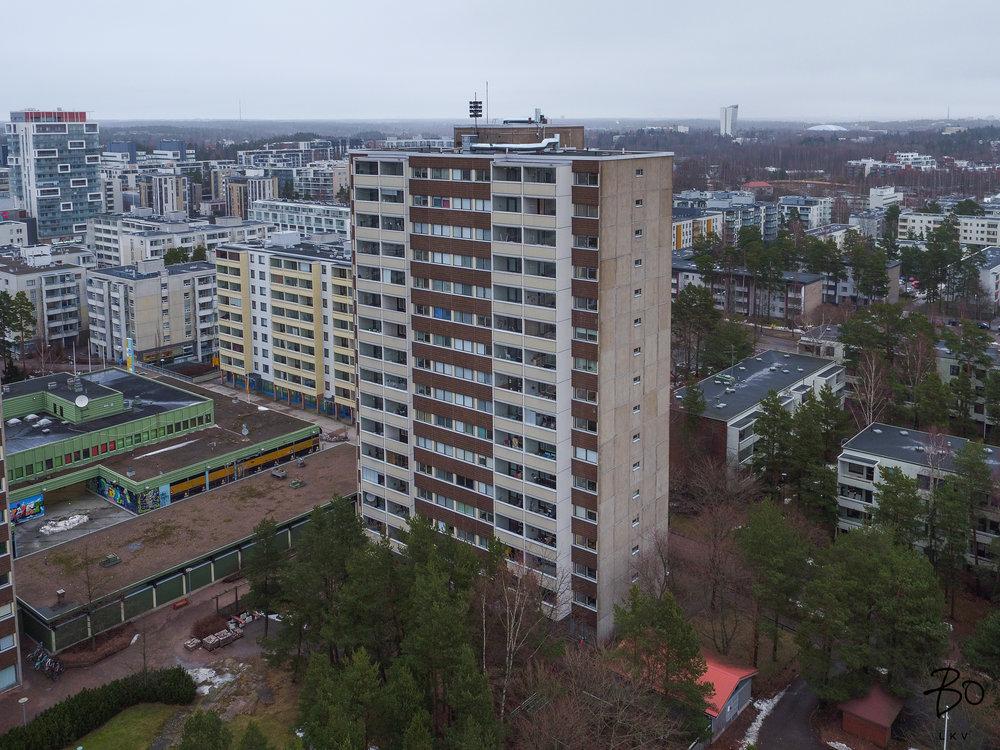 Anjankuja-4.jpg