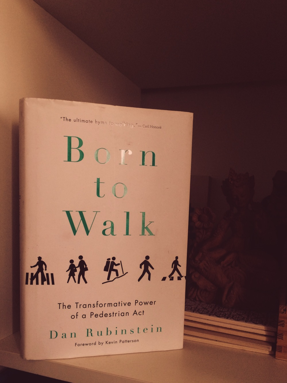 Born to Walk, Dan Rubinstein