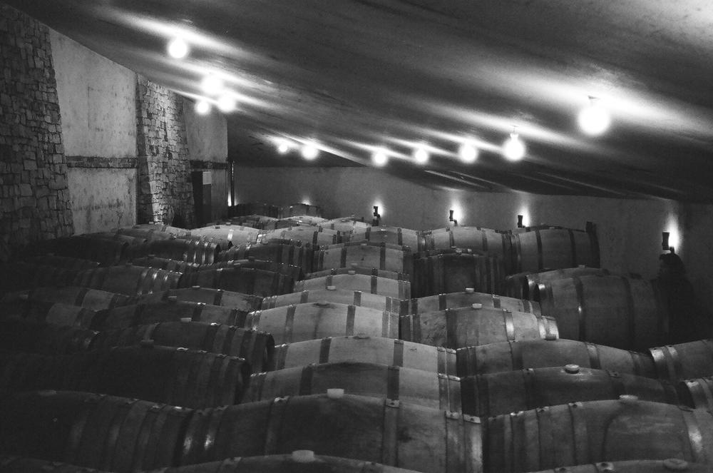 Deep within the underground cellar at Vietti