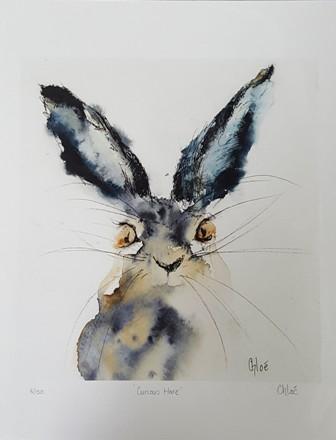 Curious Hare  8 150.jpg