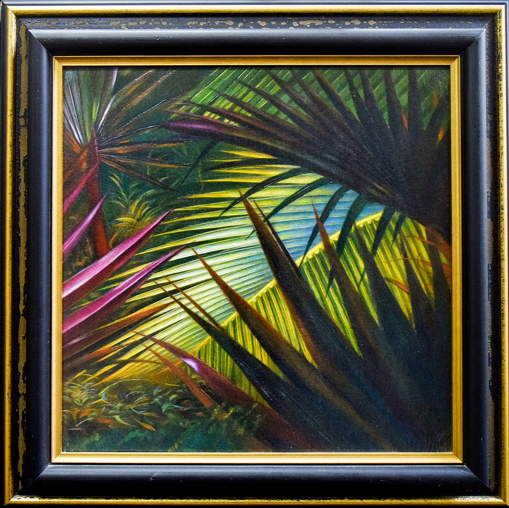 In The Tropics - On Sale For $75!
