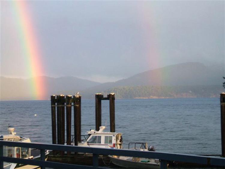 rainbow sightings (tessa windt)