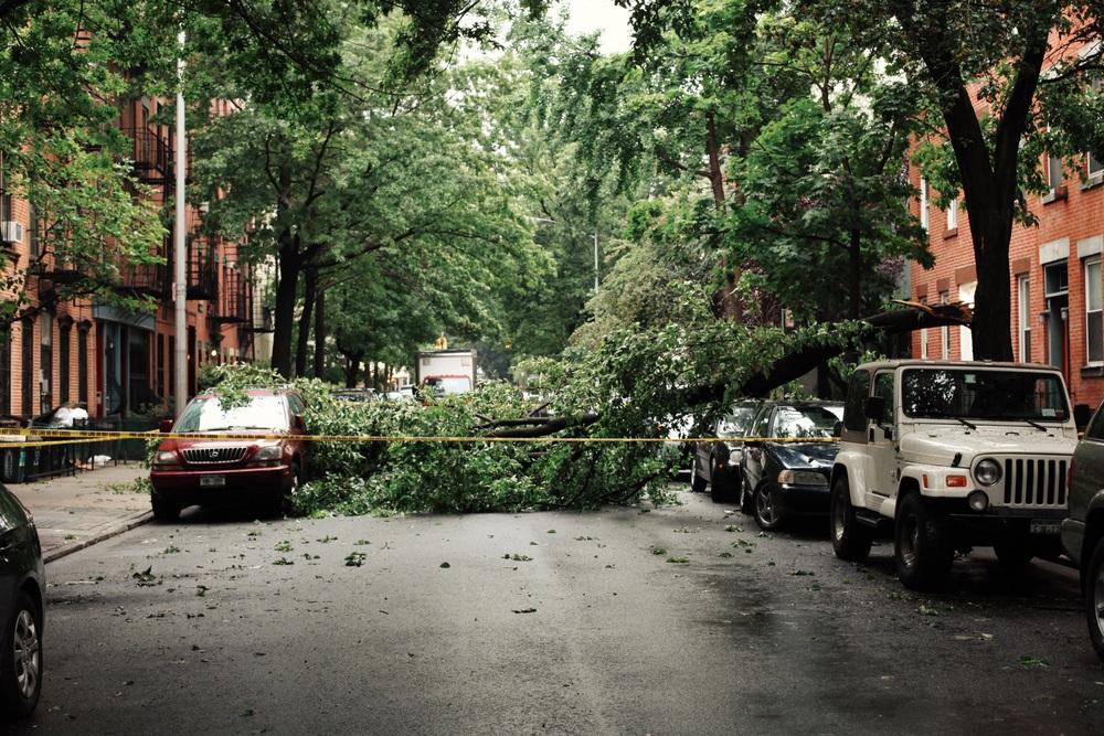 brooklyn hurricane