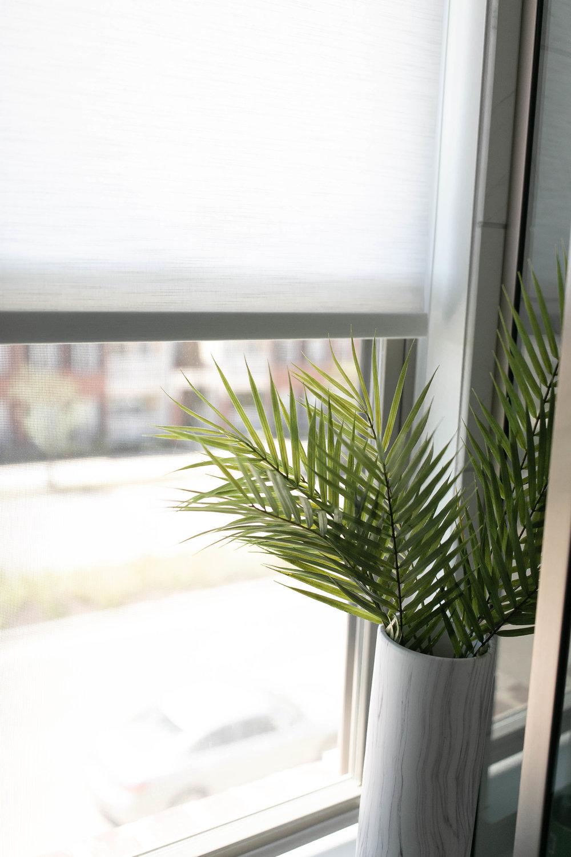 blinds-27.jpg