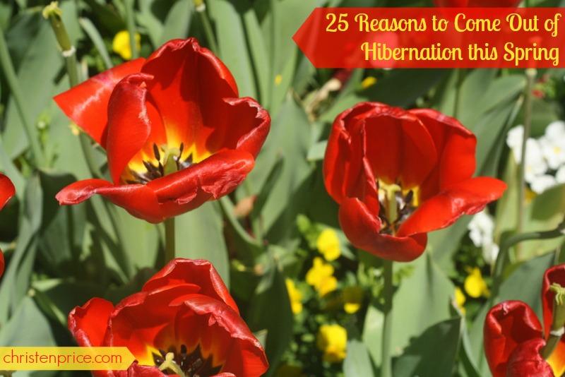 25 reasons, spring