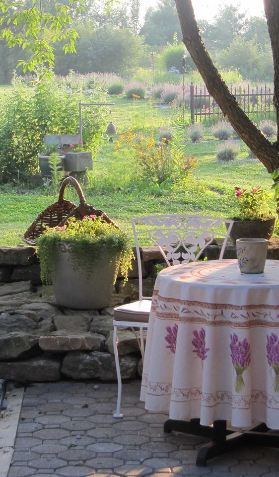 Lavender Far 42.jpg