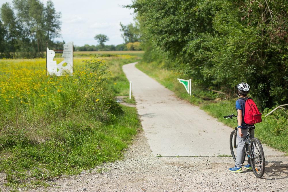 Maison des ados, Promenade à vélo - août 2017