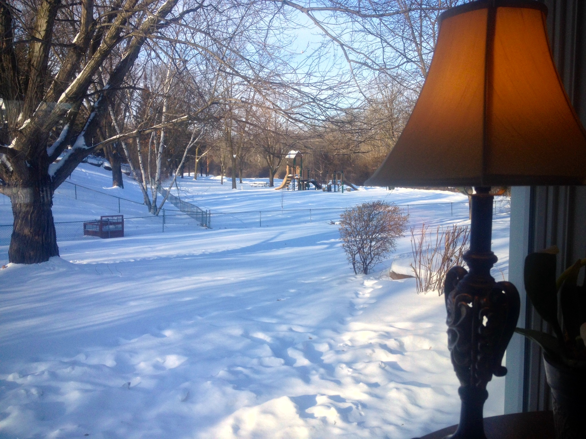 Cold but beautiful outside my window this morning.