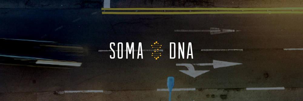 Soma DNA .jpg