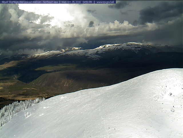 Mt. Washburn webcam this afternoon.  Imagine seeing a grizzly in there!