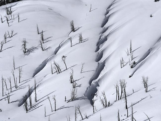 the_wind.jpg