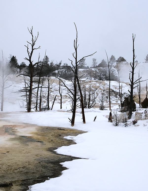 mammoth_hot_springs.jpg