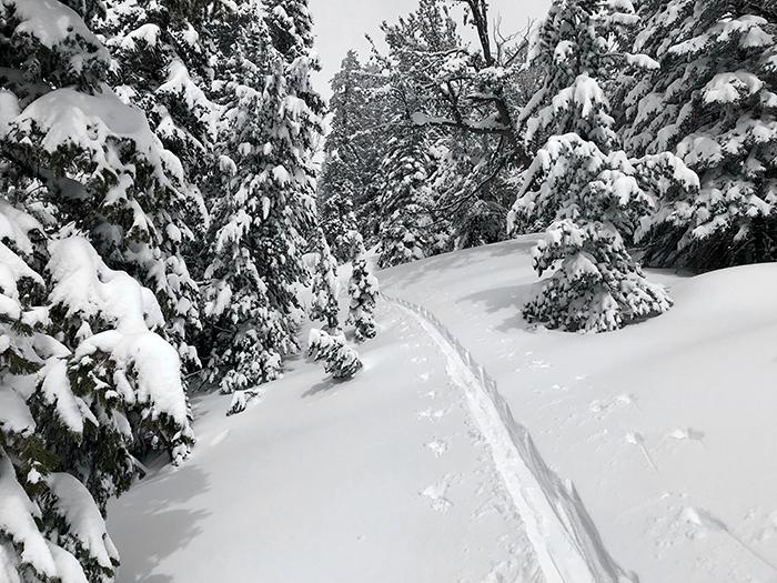 ski_corridor.jpg