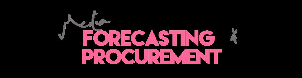 mediaforecastingandprocurement.png